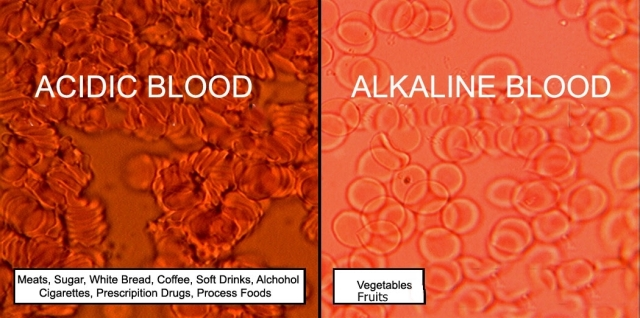 acidic vs alkaline blood