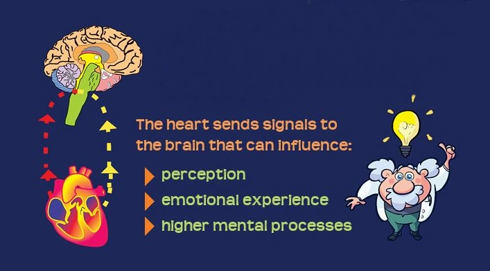 HeartMath Infographic mid2