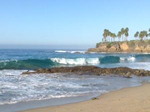 Laguna wave 2014