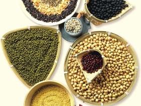 whole_grains_beans