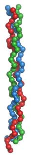 collagentriplehelix-wikimedia