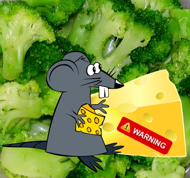 BroccoliRatCheeseWikimediaPixabay