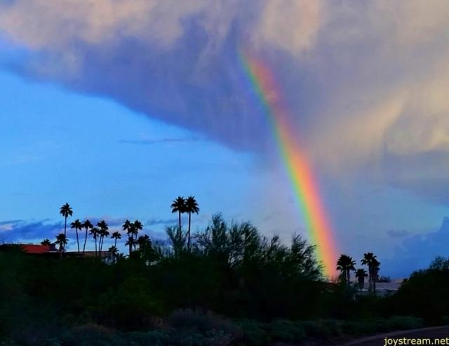 rainbow joystream 96 by DS