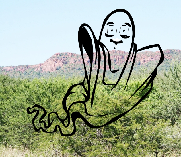 ghost story plateau-scrub pine Needpix