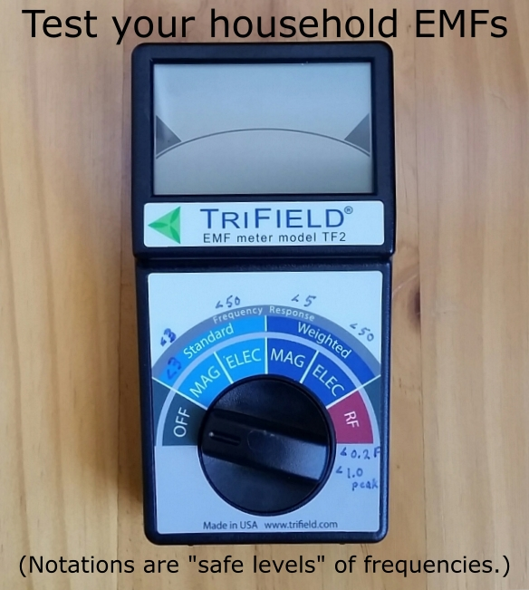 EMF meter