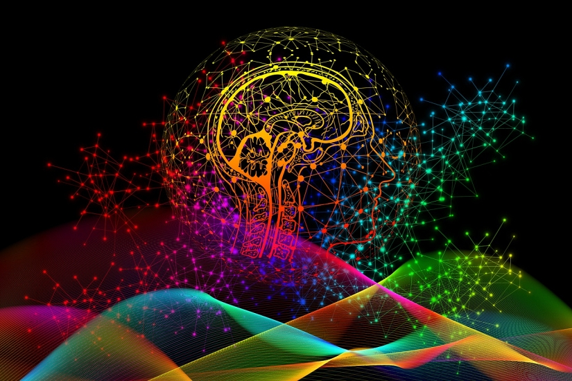 brain n landscape 96d Gerd Altmann Pixabay