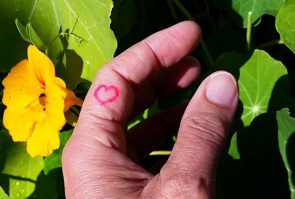 my heart temp tattoo 96dpi