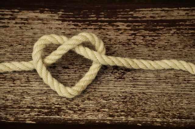 heart-love knot Pxfuel