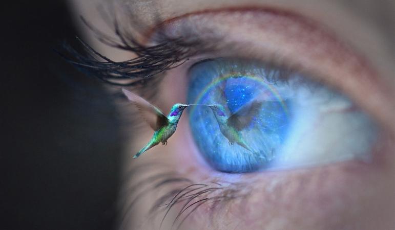 hummingbird eye ThomasWolter Pixabay 96d